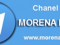 telegram chanel info